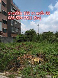 ขายที่ดิน สุขุมวิท 107 แบริ่ง 66 ขนาด 100 วา ยังไม่ได้ถมดิน